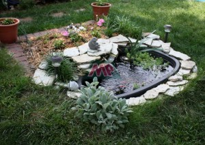 garden fish tank