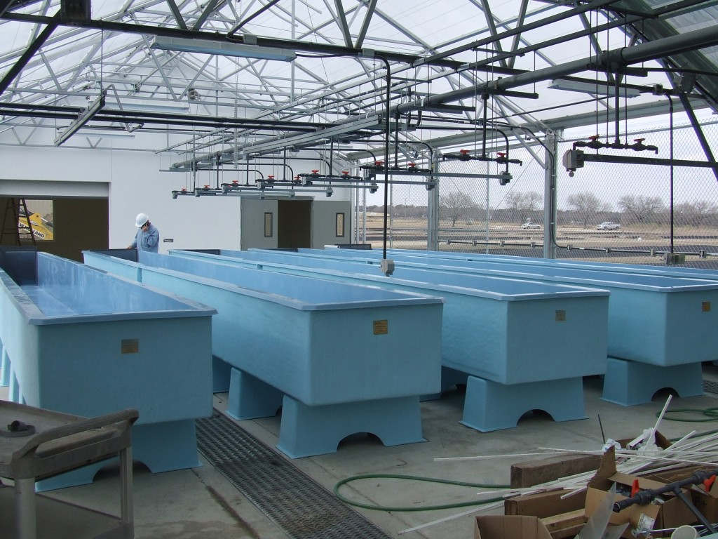 Frp fish farming hebei maple frp industry co ltd for Fish farming tanks