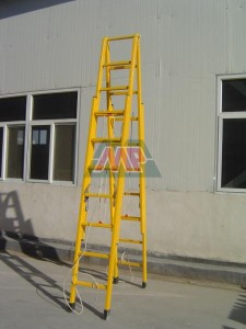 twin extension ladder